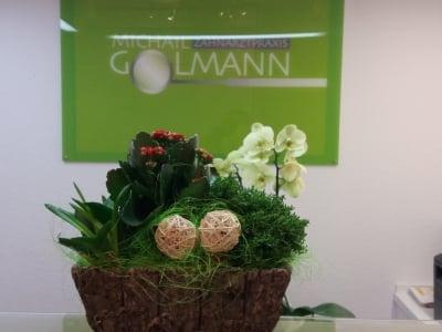 Blumen für Zahnarztpraxis Michail Golmann